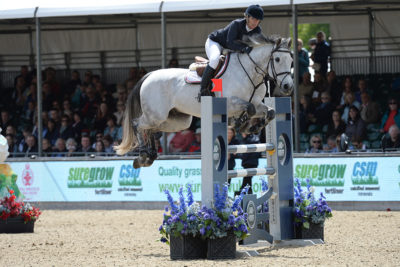 RWHS-Disciplines-900x600-jumping